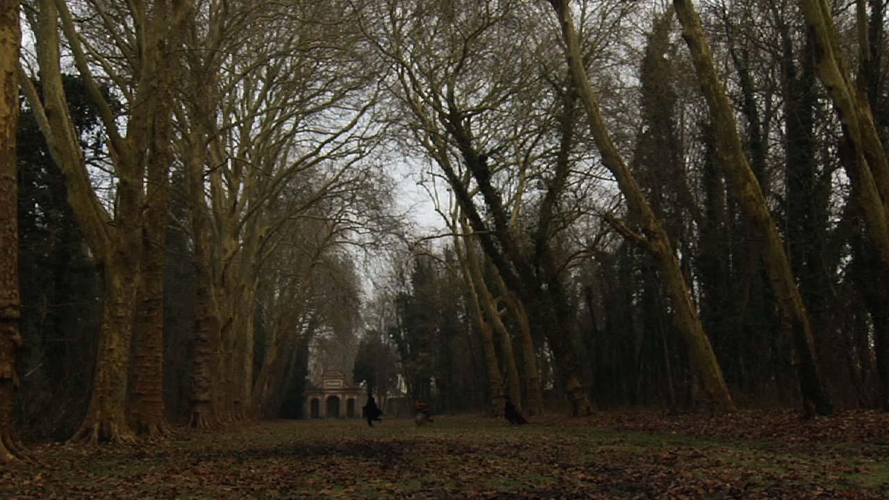 Suzanne_La traversée du parc